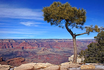 Photograph - South Rim Vista by Leda Robertson