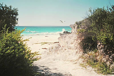 Photograph - South Shore Bermuda by Diana Angstadt