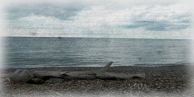 Photograph - South Shore by Leslie Montgomery
