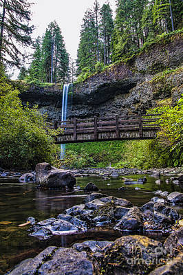 South Silver Falls With Bridge Art Print by Darcy Michaelchuk