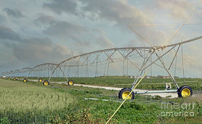South Texas Irrigation Art Print by Darla Rae Norwood