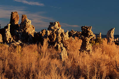 Polaroid Camera - South Tufa In Morning Sunlight by Soli Deo Gloria Wilderness And Wildlife Photography