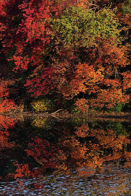 Photograph - Southborough Massachusetts by Juergen Roth