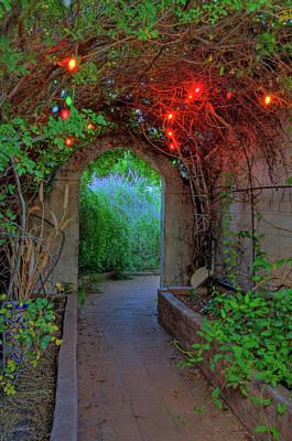 Photograph - Southeast Arizona Garden by Charlene Mitchell