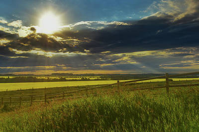 Photograph - Southern Alberta Crop Land by Philip Rispin