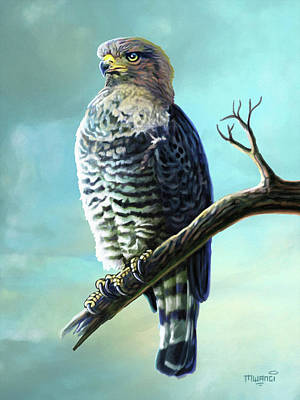 Painting - Southern Banded Snake Eagle by Anthony Mwangi