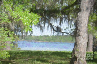Photograph - Southern Beauty - Bring On Spring Series by Andrea Anderegg