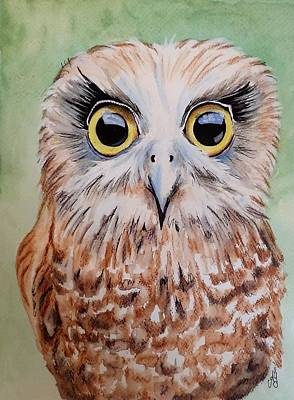Painting - Southern Boobook Owl by Anne Gardner