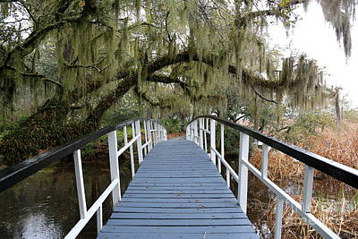 Photograph - Southern Bridge Perspective by Carol Groenen