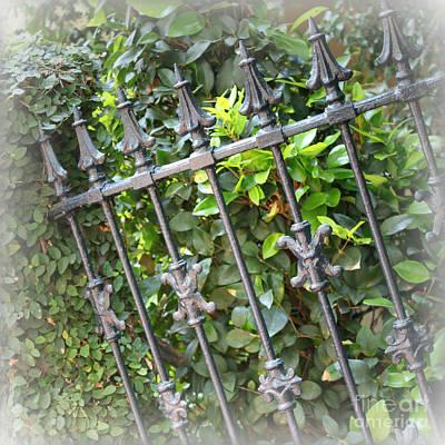 Fleur De Lis Photograph - Southern Charm Fence by Carol Groenen