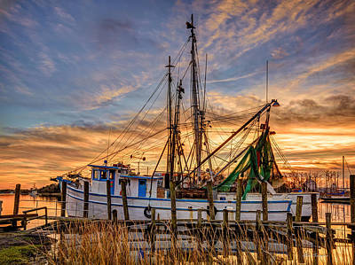 Photograph - Southern Charm by Mike Covington
