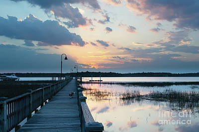 Photograph - Southern Exposure by Dale Powell