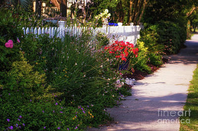 Photograph - Southern Flower Picket Fence by Dale Powell