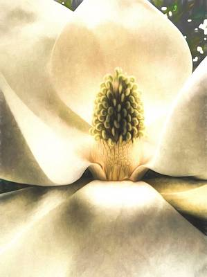 Southern Grace Art Print by JC Findley