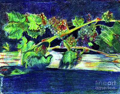 Vinos Drawing - Southern Grapes by Anna Mize Bell