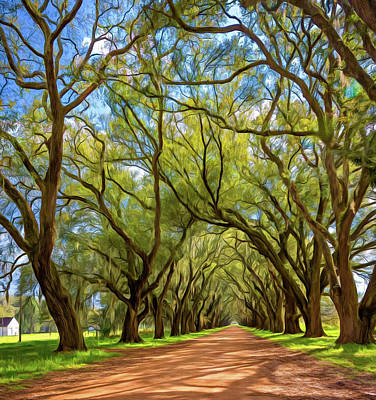 Evergreen Plantation Digital Art - Southern Lane 3 - Paint by Steve Harrington