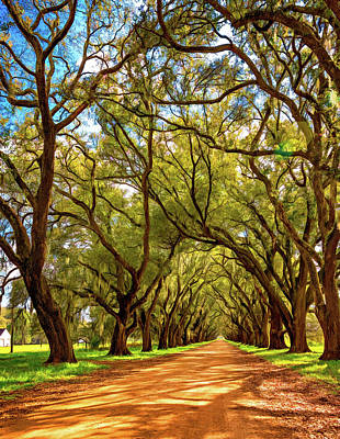 Evergreen Plantation Photograph - Southern Lane 4 - Paint by Steve Harrington
