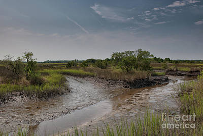 Photograph - Southern Lowcountry Salt Marsh by Dale Powell