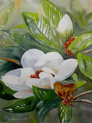 Painting - Southern Magnolia by Becky Taylor
