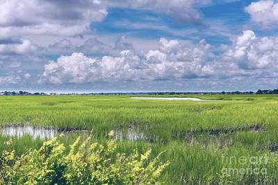 Photograph - Southern Marsh Lowcountry Tides by Dale Powell