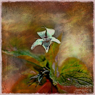 Photograph - Southern Missouri Wildflowers 6 - Digital Paint 2 by Debbie Portwood