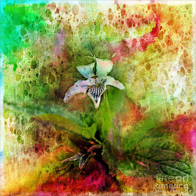 Photograph - Southern Missouri Wildflowers 6 - Digital Paint 4 by Debbie Portwood