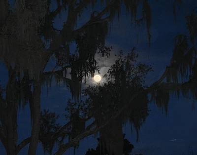 Photograph - Southern Moon by rd Erickson