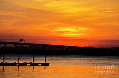 Photograph - Southern Orange Crush by Dale Powell