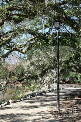 Photograph - Southern Park Path With Lamppost by Carol Groenen