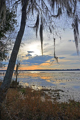 Photograph - Southern Sunset by Alan Lenk