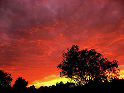 Photograph - Southern Sunset by Mark Blauhoefer