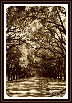 Country Scene Photograph - Southern Welcome In Sepia by Carol Groenen
