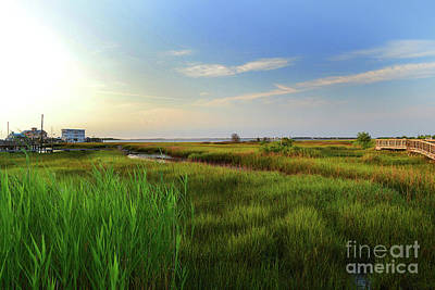 Photograph - Southport Marsh Sunrise by Amy Lucid