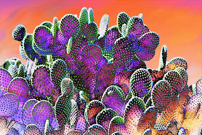 Mixed Media - Southwest Desert Cactus by Barbara Chichester
