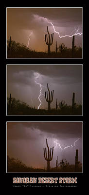 Photograph - Southwest Desert Thunderstorm Progression by James BO Insogna