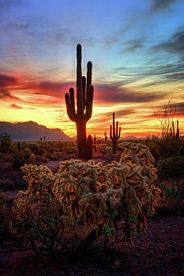 Photograph - Southwest Sunrise  by Saija Lehtonen