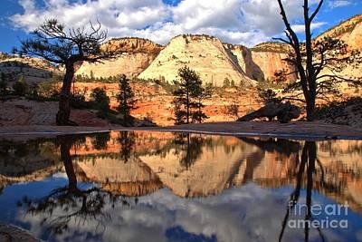 Photograph - Southwestern Desert Reflections by Adam Jewell