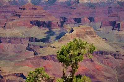 Photograph - Southwestern Grand Canyon by Roberta Byram