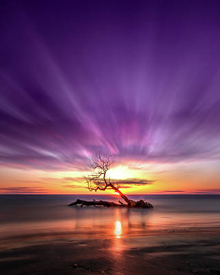 Southwick Photograph - Southwick Tree - Henderson, Ny. Lake Ontario Southwick Beach State Park Sunset Long Exposure by Bradley P Smith