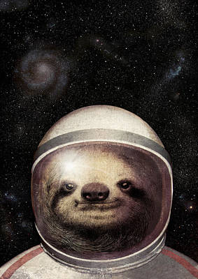 Vintage Wall Art - Drawing - Space Sloth by Eric Fan