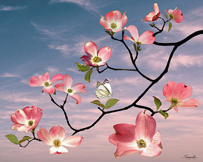 Digital Art - Spade's Pink Dogwood  by IM Spadecaller