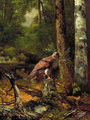 Digital Art - Spades Red-tailed Hawk by IM Spadecaller