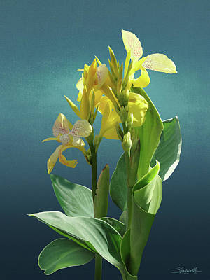 Canna Digital Art - Spade's Yellow Canna Lily by Spadecaller