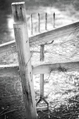 Photograph - Spading Fork On Chicken Wire Fence In Black And White by YoPedro