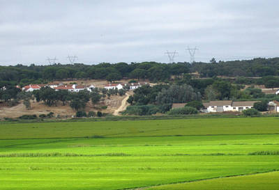 Photograph - Spain Country Side Towards Seville by John Shiron