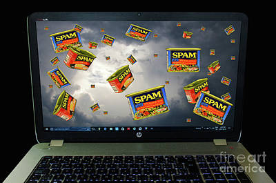 Photograph - Spam Wars by Bob Christopher