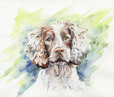Lazy Dog Painting - Spaniel by Roger Bonnick