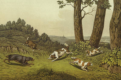 Spaniel Drawing - Spaniels by Henry Thomas Alken