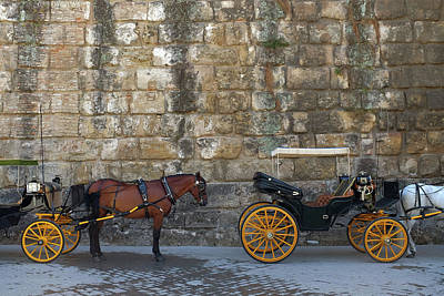 Wagon Wheels Photograph - Spanish Carriage by Carlos Caetano