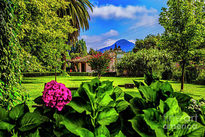 Photograph - Spanish Garden by Rick Bragan